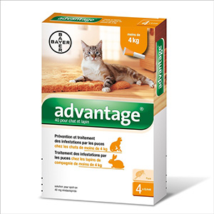BAYER Advantage Gato